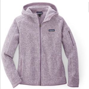 Perfect Condition-Patagonia Better Sweater Hoodie